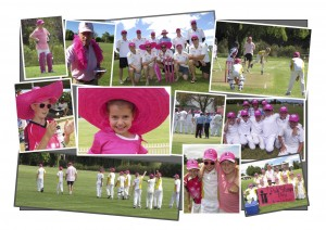 Pink Stumps Day collage JPEG