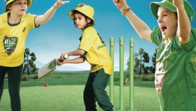 in2cricket-photo-from-flyer